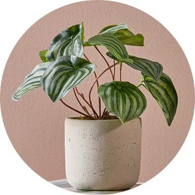 نباتات وزهور اصطناعية